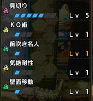 イヅチ+クルル+ベリオロス装備(発動スキル)
