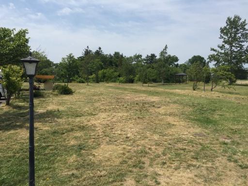栗山さくらキャンプ場のフリーサイト(駐車場側)