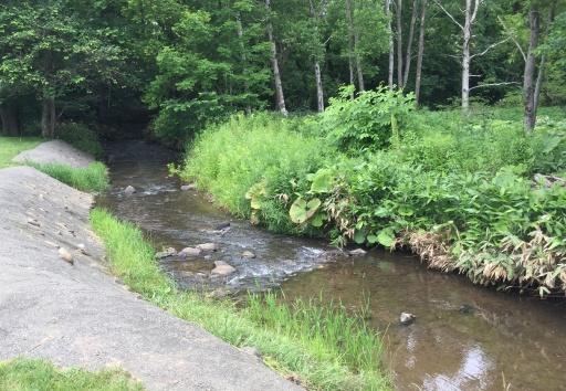 北広島市自然の森キャンプ場の小川