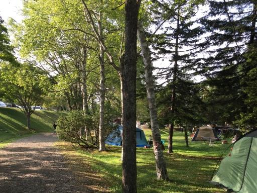 ときわキャンプ場の雰囲気